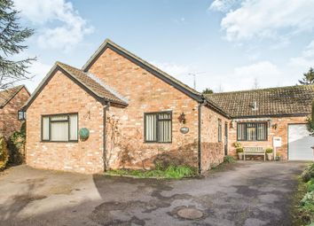 Thumbnail 3 bed detached bungalow to rent in High Street, Riseley, Bedford