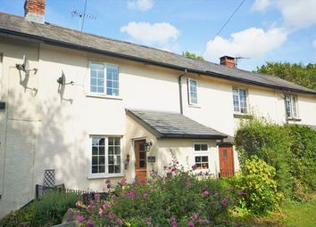 Thumbnail 2 bed cottage for sale in Lurley, Tiverton
