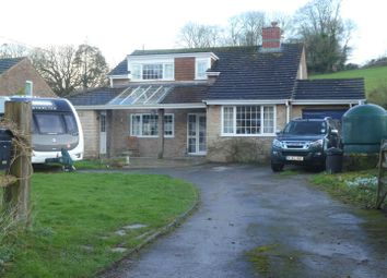 Thumbnail 3 bed property for sale in Water Lane, Winterborne Houghton, Blandford Forum