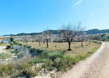 Thumbnail Finca for sale in 03313 Torremendo, Alicante, Spain