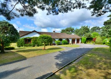 Thumbnail 3 bed detached bungalow for sale in Nyetimber Copse, West Chiltington, Pulborough