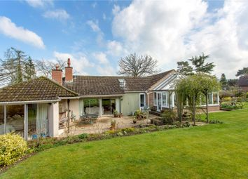 Thumbnail 4 bed detached bungalow for sale in Harp Hill, Charlton Kings, Cheltenham, Gloucestershire