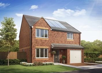 "Thumbnail 4 bed detached house for sale in ""The Balerno"" at Etna Road, Falkirk"