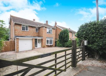Thumbnail 4 bed detached house for sale in Holybread Lane, Little Baddow, Chelmsford