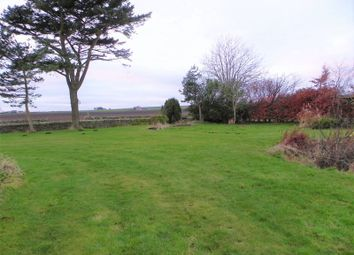 Thumbnail Land for sale in Plot Of Land, Firthfield Farmhouse, Arbroath