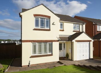 Thumbnail 4 bedroom detached house for sale in Pitcairn Crescent, Torquay