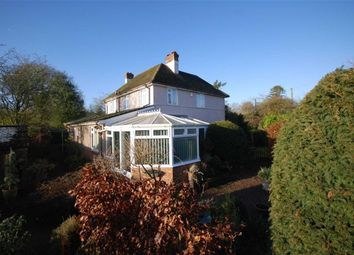 Thumbnail 4 bed detached house for sale in Much Marcle, Ledbury, Herefordshire