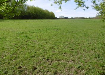 Thumbnail Land for sale in Sandy Lane, Steep Marsh, Petersfield