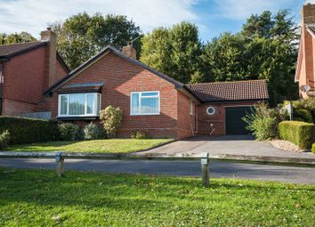 Thumbnail 3 bed detached bungalow for sale in Knights Meadow, Uckfield