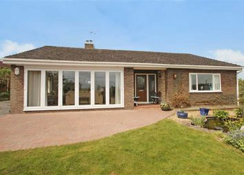 Thumbnail 3 bed detached bungalow for sale in Trefonen, Oswestry