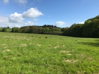 Thumbnail Land for sale in Upton Bishop, Ross On Wye