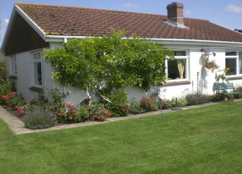 Thumbnail 3 bed detached bungalow to rent in Hamlet, Chetnole, Sherborne, Dorset