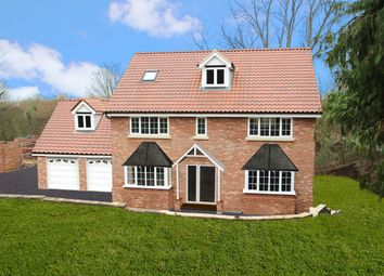 Thumbnail 6 bed detached house for sale in Hadleigh Road, Ipswich, Ipswich