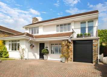 Thumbnail 4 bedroom detached house for sale in Earls Wood Drive, Plymouth
