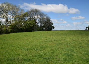 Thumbnail Land for sale in Lot 1: Land At Scalehouses, Renwick, Penrith