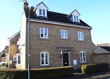 Thumbnail 4 bedroom detached house for sale in Humphrys Street, Peterborough
