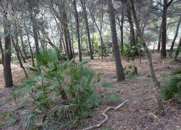 Thumbnail Land for sale in Spain, Mallorca, Pollença, Cala Sant Vicenç