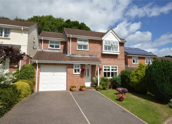 Thumbnail 4 bed detached house for sale in Willow Walk, Honiton, Devon