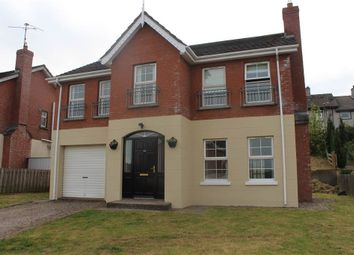 Thumbnail 4 bed detached house for sale in Derrymore Meadows, Bessbrook, Newry