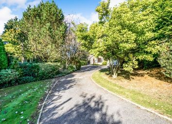 Thumbnail 4 bed bungalow for sale in Upperfield, Easebourne, Midhurst, West Sussex
