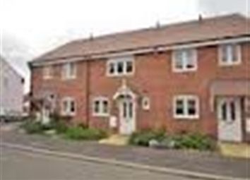 Thumbnail 3 bed semi-detached house to rent in Sunflower Way, East Anton, Andover