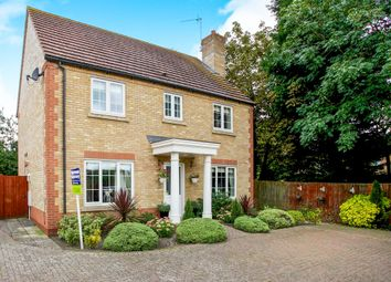 Thumbnail 4 bedroom detached house for sale in Briar Close, Chatteris
