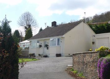 Thumbnail 3 bed detached bungalow to rent in Fortfields, Dursley