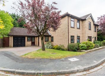 Thumbnail 4 bed detached house for sale in Reed Close, Trumpington, Cambridge, Cambridgeshire