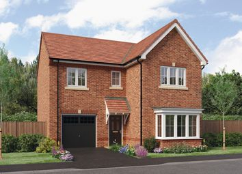 Thumbnail 4 bed detached house for sale in The Seeger, Barley Meadows, Cramlington, Northumberland