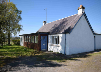 Thumbnail 2 bedroom detached bungalow to rent in Meikle, Phoineas, Beauly, Highland IV4,