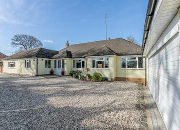 Thumbnail 4 bed bungalow to rent in Henwood Lane, Catherine-De-Barnes, Solihull