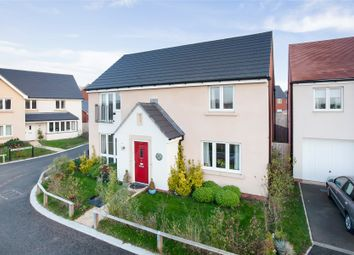 Thumbnail 4 bedroom detached house for sale in Oakbeer Orchard, Cranbrook, Exeter