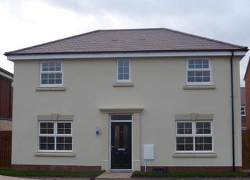 Thumbnail 4 bed detached house to rent in Cowarne Red Way, Holmer, Hereford