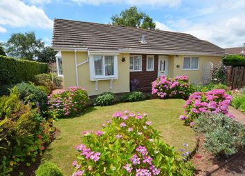 Thumbnail 3 bed bungalow for sale in Hookhills Road, Hookhills, Paignton