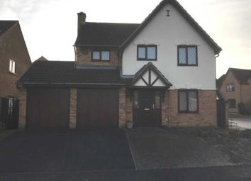 Thumbnail 4 bed detached house to rent in Batcheldor Gardens, Bromham, Bedford