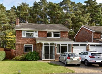 Thumbnail 4 bed detached house for sale in Windlesham, Surrey