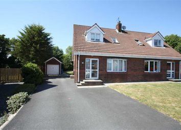 Thumbnail 3 bed semi-detached house to rent in Ashburn, Ballynahinch, Co. Down