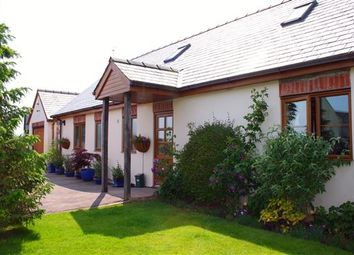 Thumbnail 3 bed bungalow for sale in St. Owens Cross, Hereford