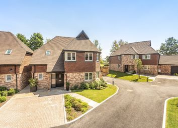 Thumbnail 4 bed detached house for sale in Swift Close, Borough Hill, Petersfield