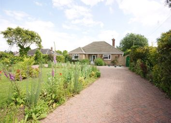 Thumbnail 2 bed detached bungalow to rent in Moss Green Lane, Brayton, Selby