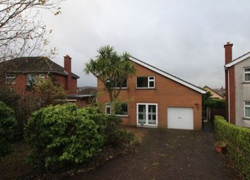 Thumbnail 4 bed detached house to rent in Cleland Park Central, Bangor
