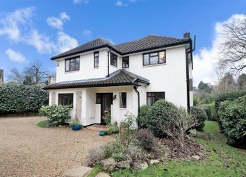 Thumbnail 4 bed detached house for sale in The Marld, Ashtead, Surrey