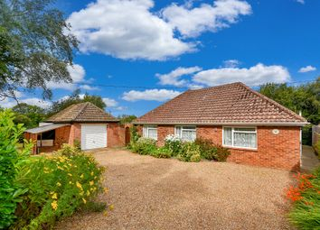 Thumbnail Detached bungalow for sale in Kings Bank Lane, Beckley, Rye