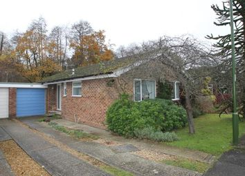 Thumbnail 3 bed bungalow for sale in Midhurst, West Sussex