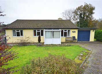 Thumbnail 3 bed detached bungalow for sale in Nant Siriol, Llanbrynmair, Powys
