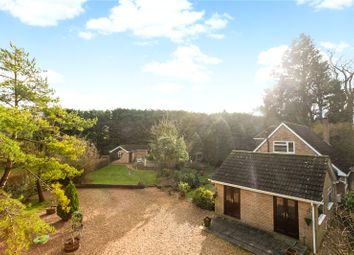 Thumbnail 3 bedroom detached house for sale in Stapley Lane, Ropley, Alresford, Hampshire