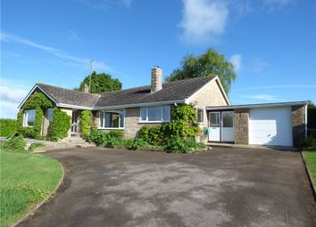 Thumbnail 4 bed detached bungalow to rent in Henley, Dorchester