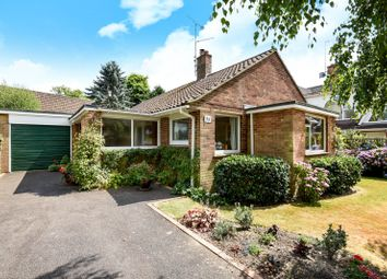 Thumbnail 3 bed detached bungalow for sale in Gaggle Wood, Mannings Heath, Horsham
