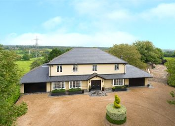 Thumbnail 6 bed equestrian property for sale in Appleby Street, Cheshunt, Waltham Cross, Hertfordshire