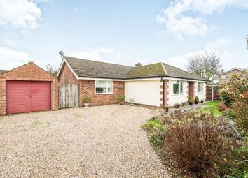 Thumbnail 3 bed bungalow for sale in Easton, Norwich, Norfolk